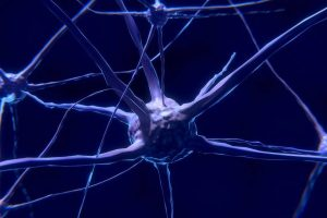 neuromodulacija